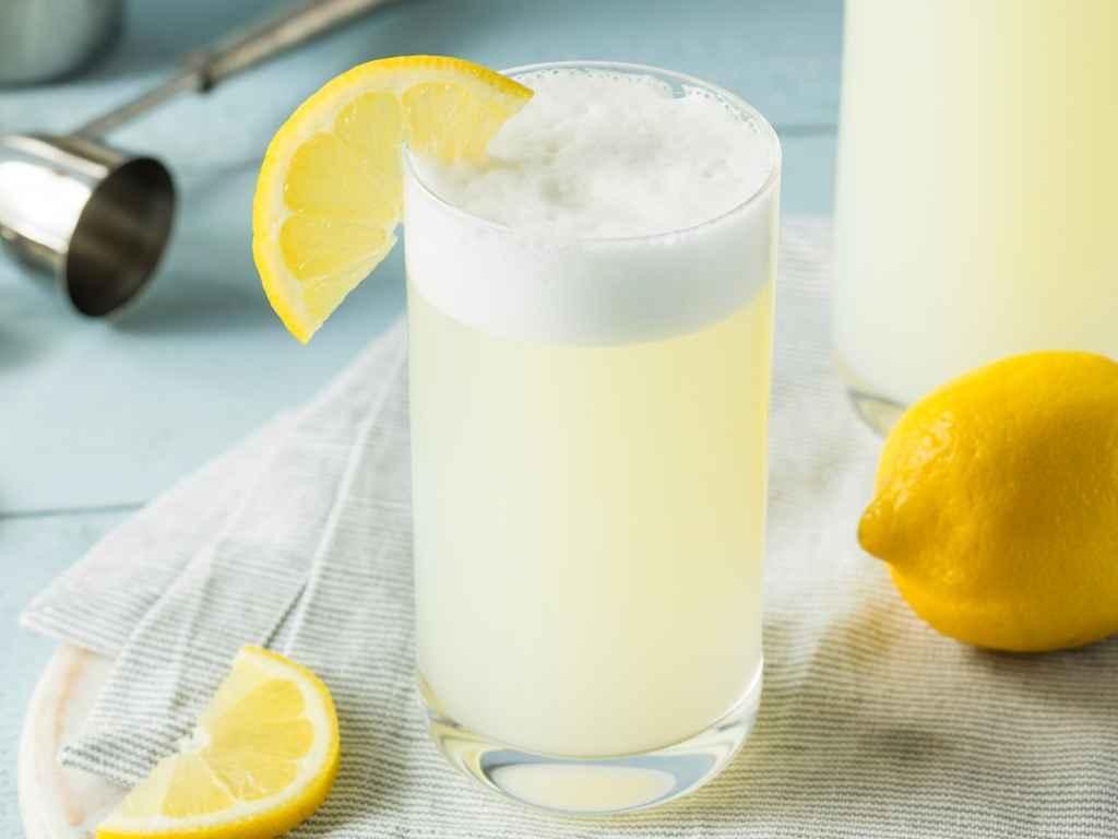 Citrus Gin Fizz