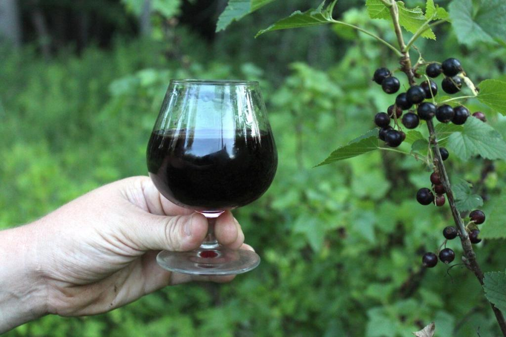 Blackcurrant Liqueur